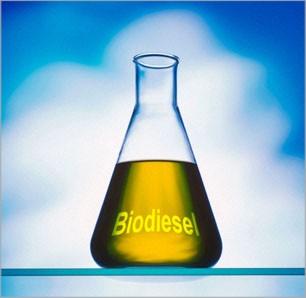 Biodiesel_B100